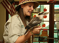 female trainer holding hawk