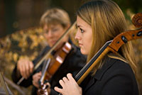 classical musicians playing the violin and cello