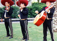 three Mariachi musicians singing with red somberos