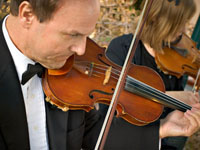 close up of male violinist